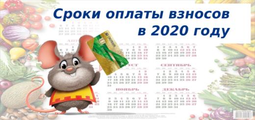 Cроки оплаты взносов в 2020